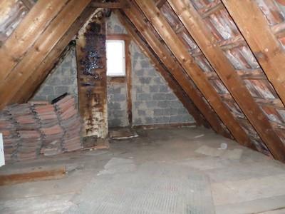 Dach geeignet für Waermedaemmung