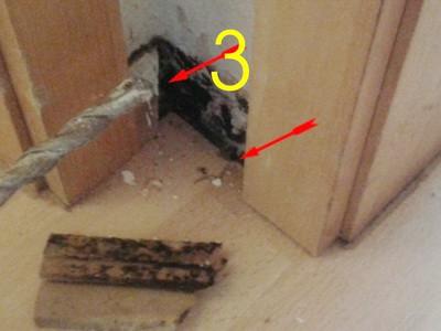 Mieter lueftet nicht Warum schimmelt die Wohnung? da der Fußboden wegen undichter Rohre unter Wasser steht